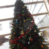ロビー展示 「クリスマスツリー&イルミネーション」