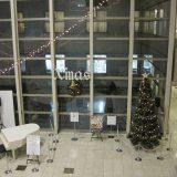 ロビー展示 クリスマスツリー