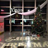 ロビー展示12月 クリスマスツリー